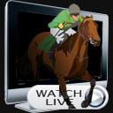 live-stream-horse-racing.jpg