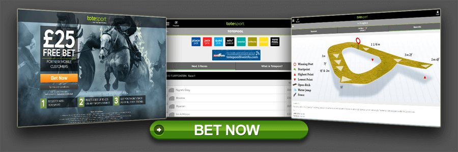 totesport-website.png